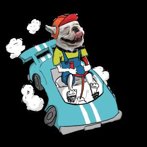 chien_voiture